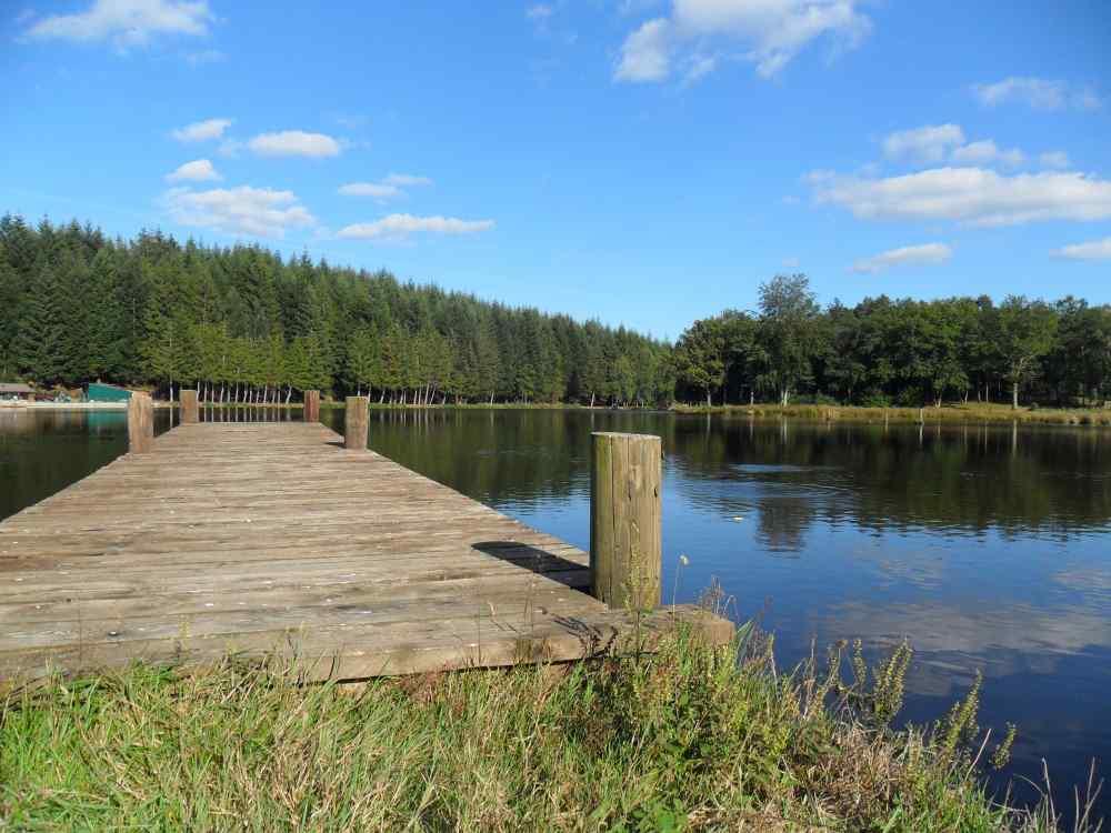 Lac etang vendre dans le morvan proprietes etangs a for Prix bache pour etang